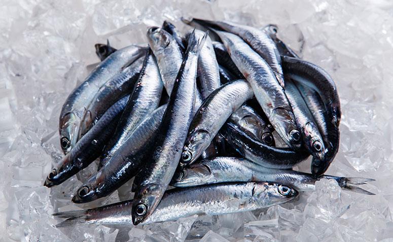beneficios anchovas